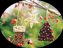Зимнее печенье для птиц